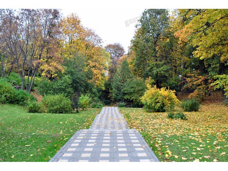 картинки киров ботанический сад